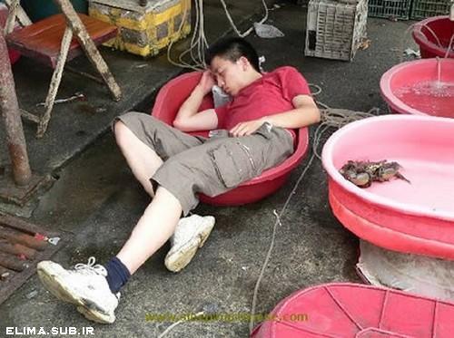 elima.mihanblog.com-funny-sleep (10).jpg